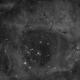 Rosette Nebula (Caldwell 49) in Ha,                                Ryan Kinnett