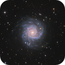 M74 - Phantom Galaxy,                                Robert Eder
