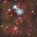 Nebulosa do Cone,                                Izaac da Silva Leite