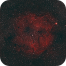 IC1396 Elephant Trunk Nebula,                                George C. Lutch