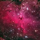 M16 (NGC 6611), open cluster and nebula in Serpens,                                José Joaquín Pérez