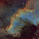 NGC7000 - Cygnus Wall,                                Mike S