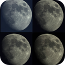 Mond 2019-06-13,                                Bruno