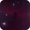The Horsehead,                                Don Curry
