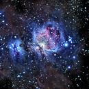 M42 - The Great Orion Nebula Wide Field,                                Timothy Martin & Nic Patridge