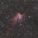 The Wizard Nebula,                                Wesley Creech