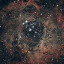 NGC 2237 Rosette Nebula,                                Andrea Peretto