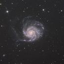 M101,                                Hideki