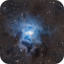 Iris nebula,                                Cody Looman
