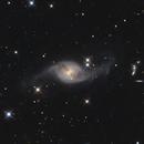 NGC 3718,                                Lee B