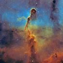 Elephant's Trunk Nebula IC 1396,                                Chris