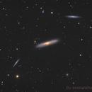 Beautiful Color of NGC4216 LLRGB,                                seasonzhang813