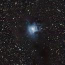 NGC 7023 - Iris nebula widefield,                                Gendra