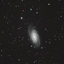 NGC 2903/2905,                                Ken Sharp