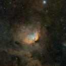 SH2-101 Tulip Nebula,                                litobrit