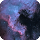 NGC 7000 - North America Nebula - Sep 2020 v1 Bicolor,                                Martin Junius