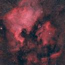 NGC 7000 and IC 5070 - North America nebula and pelikan nebula,                                Riedl Rudolf