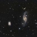 NGC 3718 in Ursa Major,                                Terry Danks