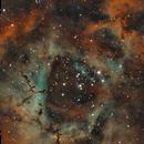 A Rosa do Céu (Sky's Rose) -  Caldwell 49,                                Eduardo Oliveira
