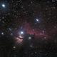 Horse head nebula,                                Ruy G. Coelho