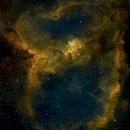 Heart Nebula - Hubble Palette,                                CitySpace Astro