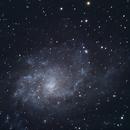 M33 Triangulum Old Initial DSLR with new Edge 9.25,                                Brandon Tackett