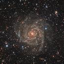 IC 342 - Hidden Galaxy,                                Adam Landefeld
