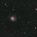 M101, The Pinwheel Galaxy,                                Lee Morgan
