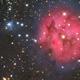IC5146 - Cocoon Nebula,                                Patrick Dufour