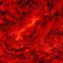 Sun AR12773 in H-alpha September 26, 2020,                                LeoD