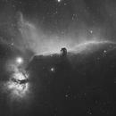 Horsehead Nebula,                                ks_observer