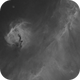 Seagull Nebula in H-alpha (Starless version),                                Orestis Pavlou