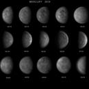 Mercury 2018,                                Raimondo Sedrani