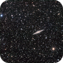 NGC 891 Edge-On Galaxy,                                Richard Pattie