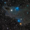 LBN 546 - Shark Nebula in Cepheus - LRGB,                                Daniel.P