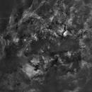 Cygnus mosaic,                                Ola Skarpen SkyEyE