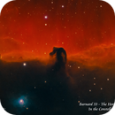 Barnard 33 - The Horse Head Nebula  Ha, SII, H beta,                                Paul Borchardt