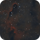IC 1396:  Prueba Atik 314L+,                                J.L.López Salas