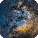 NGC 7822 Nebulosity,                                Amir Salehi