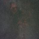 Cygnus widefield,                                Christoph Dittmann