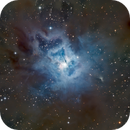 Iris Nebula, NGC 7023,                                Kent Wood