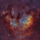 NGC 7822,                                Rey Hernandez