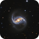 NGC 986- Barred Spiral Galaxy in Fornax (The Furnace),                                Terry Robison