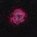 Skull Nebula (Rosette Nebula),                                Kapil K.