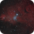Cone Nebula Crop,                                Richard Sweeney