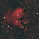 Ced 214,                                John Hosen