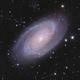 M81 M82,                                Rhett Herring