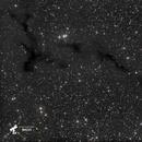 Nébuleuse de l'hippocampe (Barnard 150) - Sadr Espagne,                                Julien Bourdette