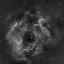 C49 Rosette Nebula-NGC 2237-H-alpha-testing Orion flattener,                                Adel Kildeev