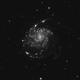 M 101: The Pinwheel Galaxy in Ha,                                Marco Failli